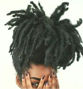 Afro Dreads High Ponytail