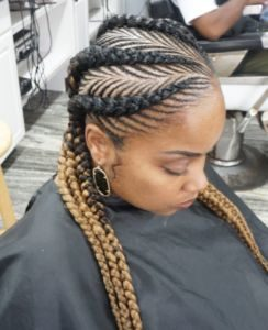 Ombre Fishbone Braids