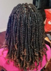 Ombre Spring Twists