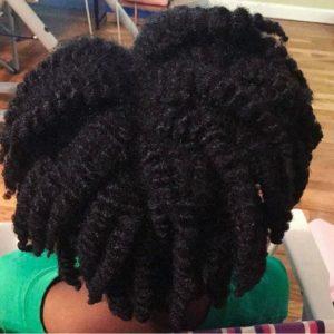 Natural Hair Twist Out